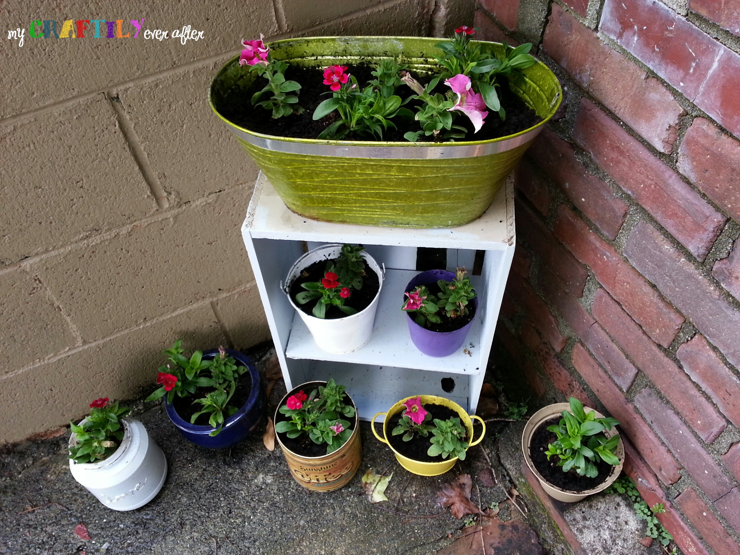 Creating a Container Garden with Miracle-Gro
