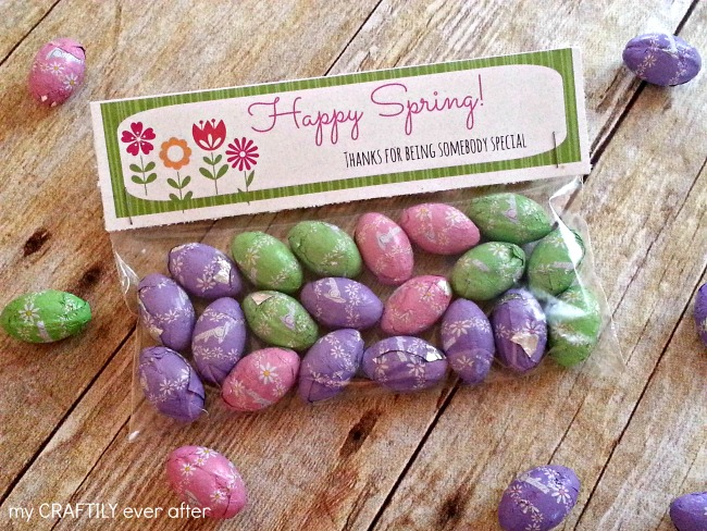 snack bag spring treat printable
