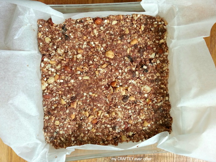 dove chocolate covered fruit granola bars