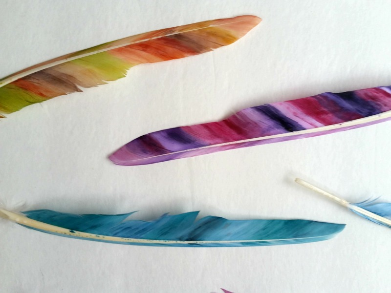 painted feathers close up