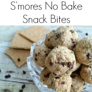 s'mores_snack_bites