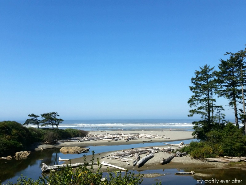 Explore the Washington Coast: Kalaloch