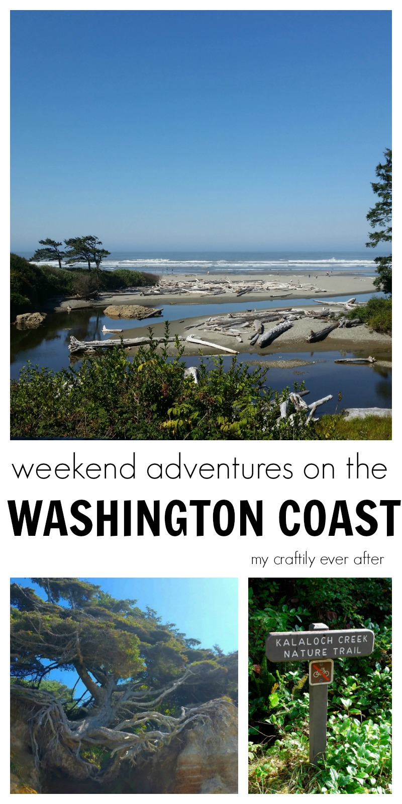 weekend adventures on the washington coast