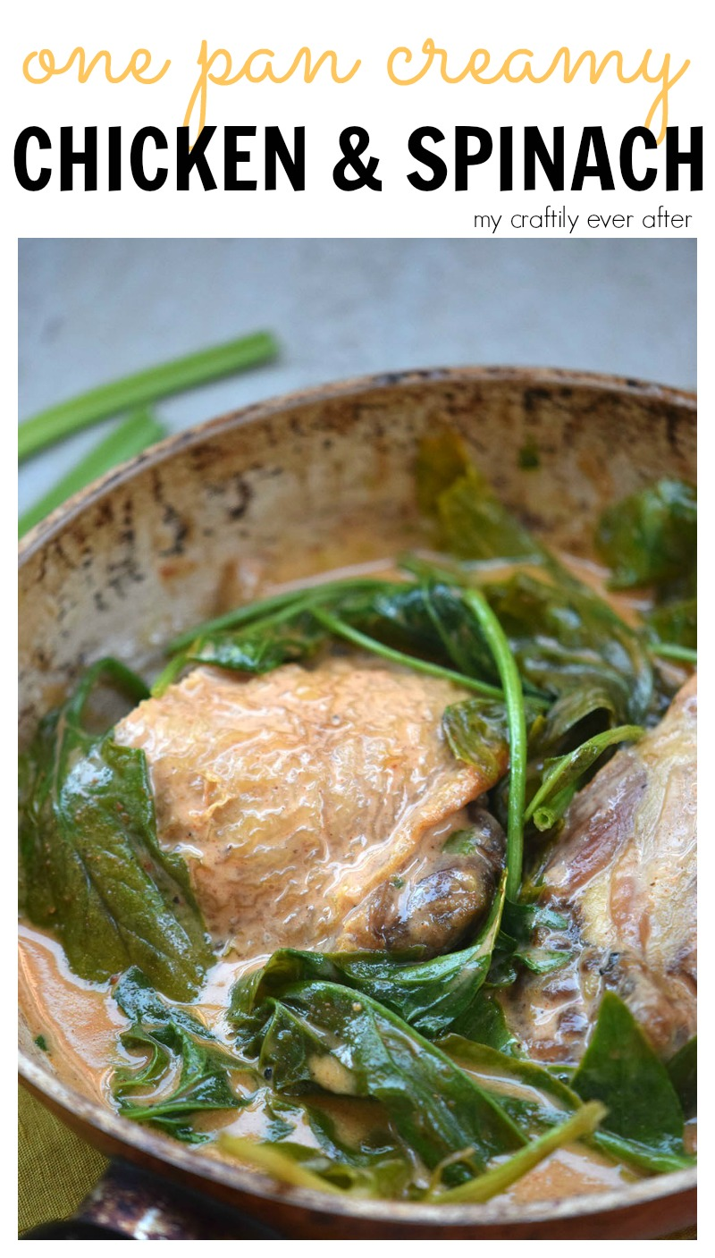 one-pan-creamy-chicken-spinach