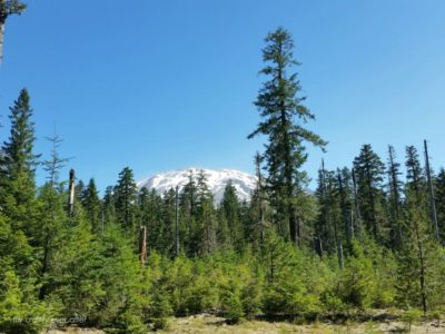 Explore Mount St. Helens – Ape Cave Adventure