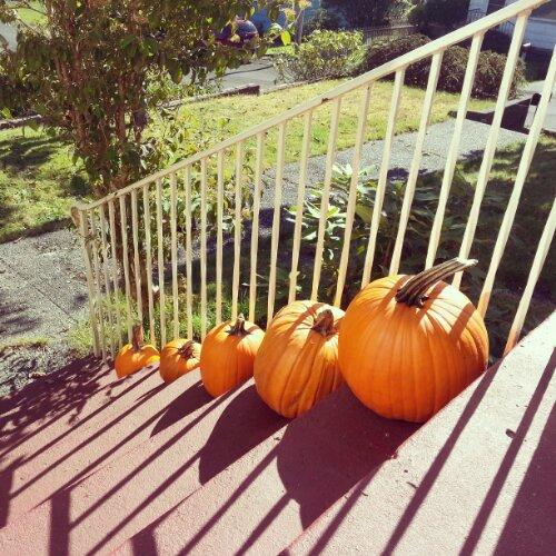 Carving Pumpkins with Pumpkin Masters!!