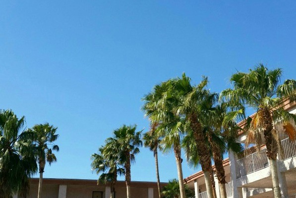 Explore Southern California: Palm Springs Day 1